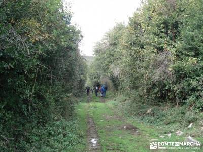 Parque Natural Sierra de Cebollera (Los Cameros) - Acebal Garagüeta;senderismo el escorial via libr